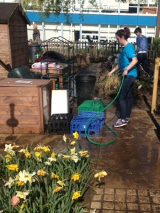 Tootoomoo helped to create the new garden at Rokesely School Garden and donated additional seeds to their project