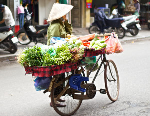 Vietnamese street food vendor